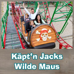Rollercoaster Wild Mouse