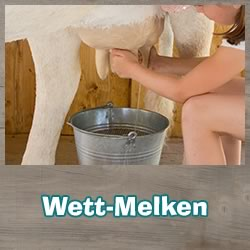 Milking contest