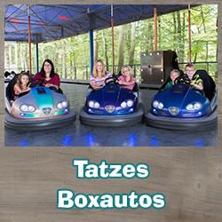 Autoscooter Tatzes Boxautos