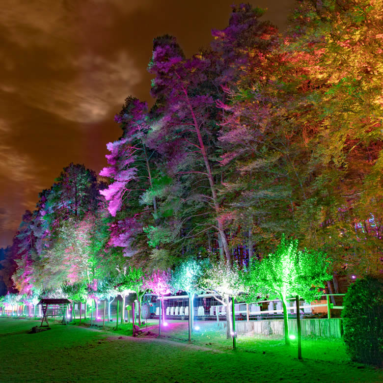 Eifelpark Herbstleuchten 2020