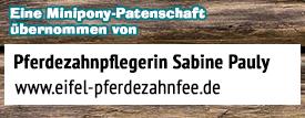 patenschaft-mini-pony