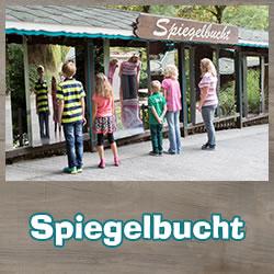 Spiegelbucht Zerrspiegel Eifel