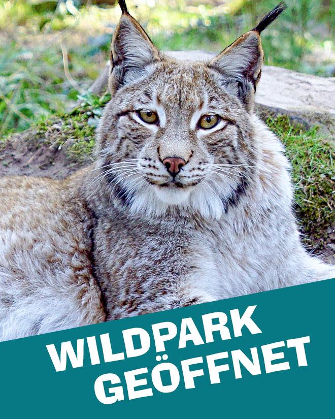 Tierpark geöffnet Eifel rlp