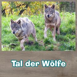 Tal der Wölfe