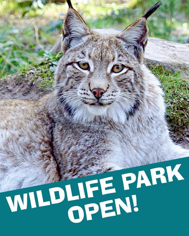 Wildlife park open
