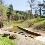 Eifelpark - Berenravijn