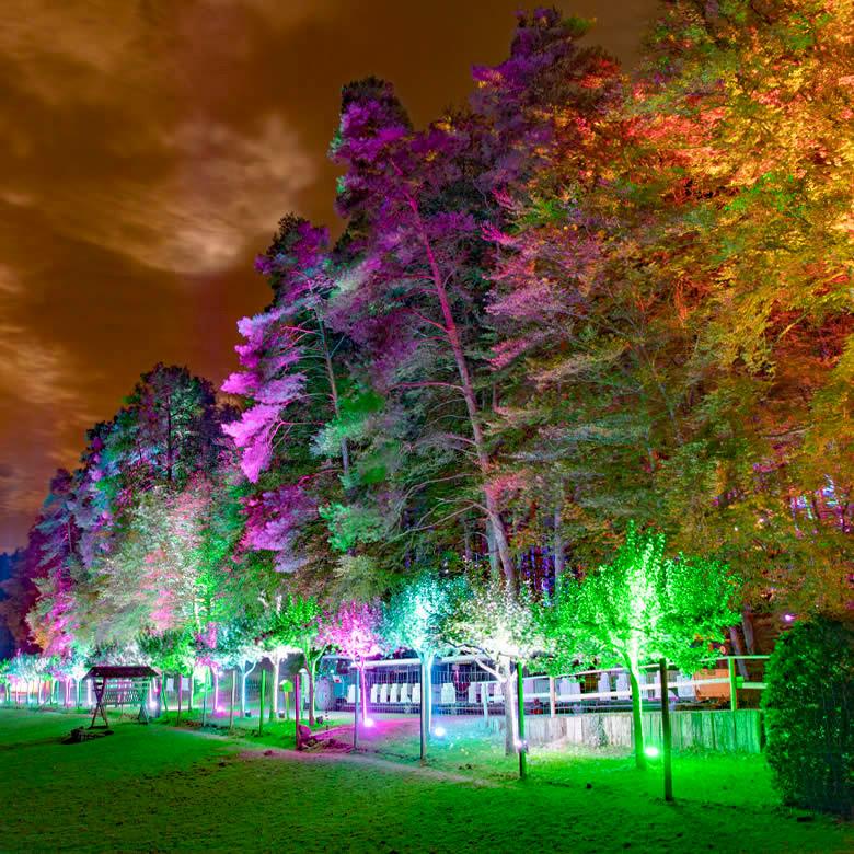 Eifelparkverlichting 2021
